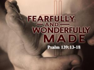 fearfully_and_wonderfully_made_graphic